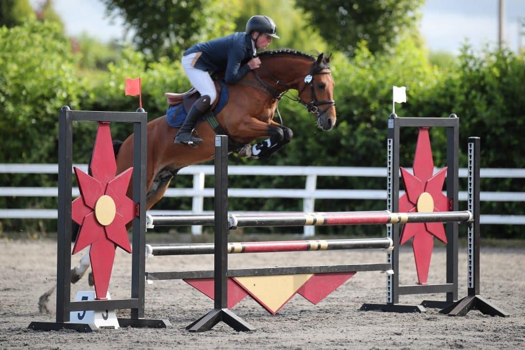 Stallion Machnus d'Hyrencourt jumping a fence